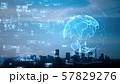 グローバルネットワーク 57829276