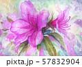 つつじ・春・背景 57832904