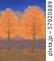 紅葉の木々・朱色・星空 57920889