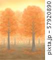紅葉の木々・朱色・夕焼け、または朝焼け 57920890