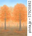紅葉の木々・朱色・晴天 57920892