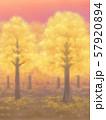 紅葉の木々・黄金・夕焼け、または朝焼け 57920894