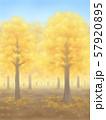 紅葉の木々・黄金・晴天 57920895