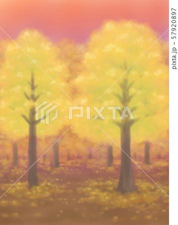 紅葉の木々・黄色・夕焼け、または朝焼け 57920897