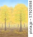 紅葉の木々・黄色・晴天 57920898
