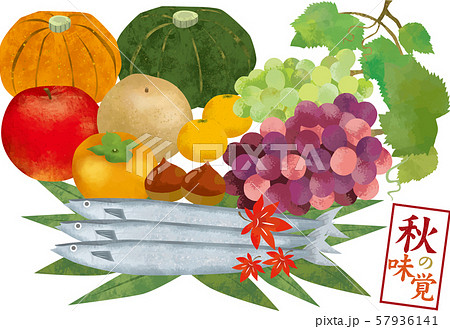 秋の味覚:秋 秋の味覚 かぼちゃ りんご ぶどう 柿 梨 さんま 紅葉 栗 みかん 食べ物 57936141