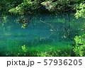 鳥海山から湧き出る湧水で満たされた丸池 57936205
