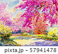Watercolor painting landscape of cherry blossom. 57941478