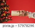 クリスマスプレゼント クリスマスツリー クリスマスカラー 57978296