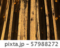 Contrast vertical wooden planks. 57988272