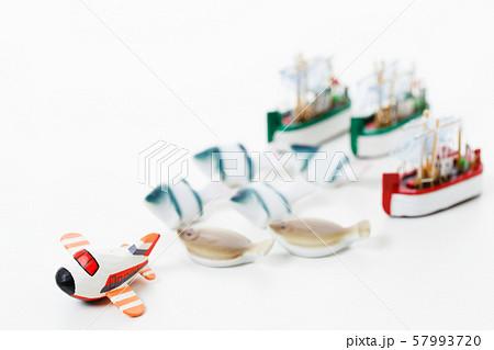 魚 鮮魚 漁業 魚介類 さかな 魚屋 57993720