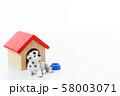 ペット 犬 58003071