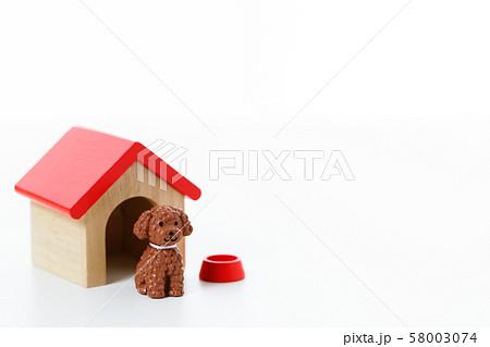 ペット 犬 58003074