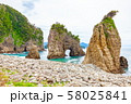 伊豆半島浮島海岸の奇岩、静岡県賀茂郡西伊豆町にて 58025841