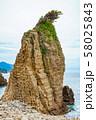 伊豆半島浮島海岸の奇岩、静岡県賀茂郡西伊豆町にて 58025843