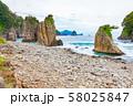 伊豆半島浮島海岸の奇岩、静岡県賀茂郡西伊豆町にて 58025847