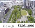 神戸フラワーロード(東遊園地) 58031090