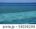 オーストラリア・ハミルトン島 58036288