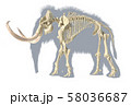 Woolly mammoth skeleton, realistic 3d 58036687