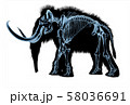Woolly mammoth skeleton, x-ray effect. 58036691