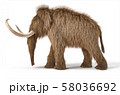 Woolly mammoth realistic 3d illustration viewed 58036692
