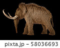 Woolly mammoth realistic 3d illustration viewed 58036693