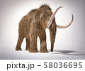 Woolly mammoth realistic 3d illustration. Front 58036695
