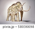 Woolly mammoth with skeleton, perspective frontal 58036698