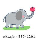 象とりんご 58041291