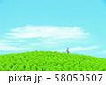 コキアの丘 58050507
