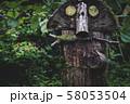 森の朽ちた妖精 58053504