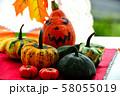 秋の実りの収穫祭 58055019