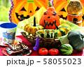 秋の実りの収穫祭 58055023