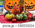 秋の実りの収穫祭 58055024