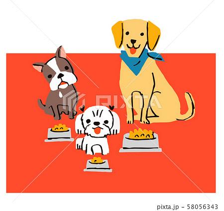 犬3匹とごはん 58056343