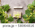 Flowers and leaves of linden tree 58064816