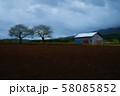 畑 58085852