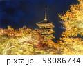 日本の秋 京都 東寺のライトアップと紅葉 58086734