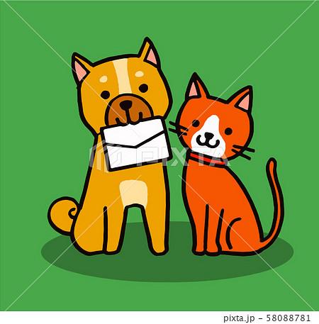 手紙を咥える犬と猫 58088781