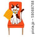 椅子に座る猫 58088788