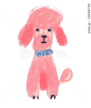 ピンクのプードル 58088789