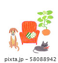 赤いソファーと猫と犬 58088942