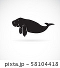 Vector of dugong design on white background. 58104418