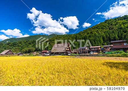 《岐阜県》白川郷合掌造り集落・秋の収穫シーズン 58104970