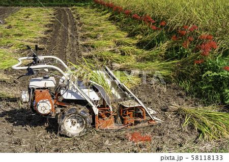 稲の刈取機、バインダーの写真素材 [58118133] - PIXTA