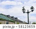 小樽運河 カモメ イメージカット 58123659