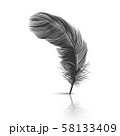 Vector 3d Realistic Falling Black Fluffy Twirled Feather with Reflection Closeup Isolated on White 58133409