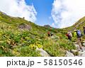 白馬岳登山道 58150546