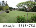 タマン・アユン寺院の庭 58154758