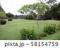 タマン・アユン寺院の庭 58154759